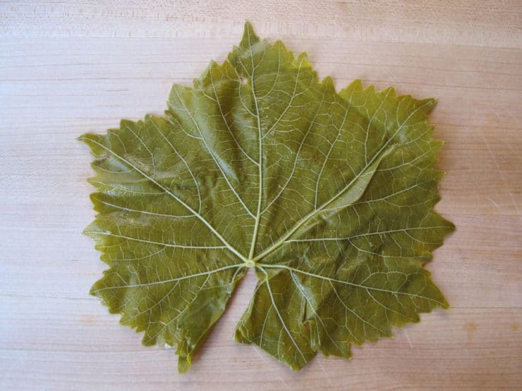 Grape leaf on a cutting board with vein side up.