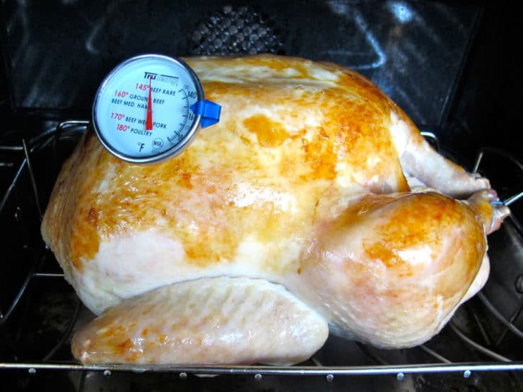Insert thermometer in turkey and return to oven.