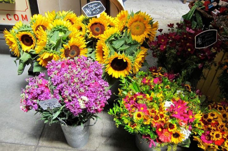 Fresh organic sunflowers, pink flowers, and colorful bouquets in metal containers on the ground.