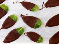 Chocolate dipped mint leaves on a parchment lined sheet.