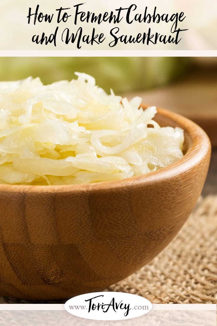 How to Ferment Cabbage and Make Sauerkraut - Tutorial for fermenting cabbage in a crock. Prepare tangy sauerkraut with natural probiotics. | ToriAvey.com #healthy #probiotic #vegan #backtobasics #vegetarian #cleaneating #guthealth #vegan #lightenup #vegan #kitchenhacks #tutorial #healthfood #cabbage #sauerkraut #ferment #fermentation #probiotics