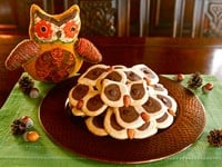 Hoot Owl Cookies from Tori Avey