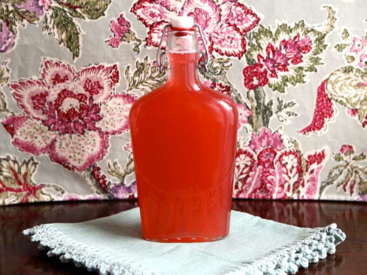 Homemade Rhubarb Syrup - Rhubarb Simple Syrup Recipe