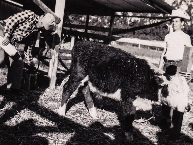 Long Gulch Ranch