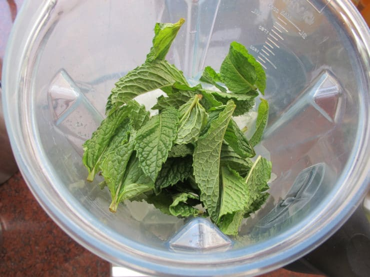 Pour into cold glasses and serve. Garnish with sprigs of mint, if desired. Serve and enjoy!