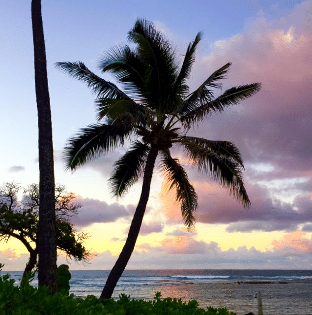 In Hawaii remembering Beth