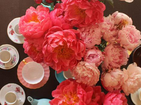 The Drama of Peonies in Spring