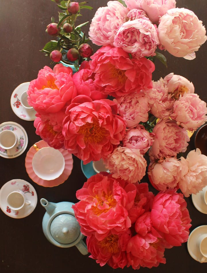 The Drama of Peonies in Spring - Home Decor Inspiration