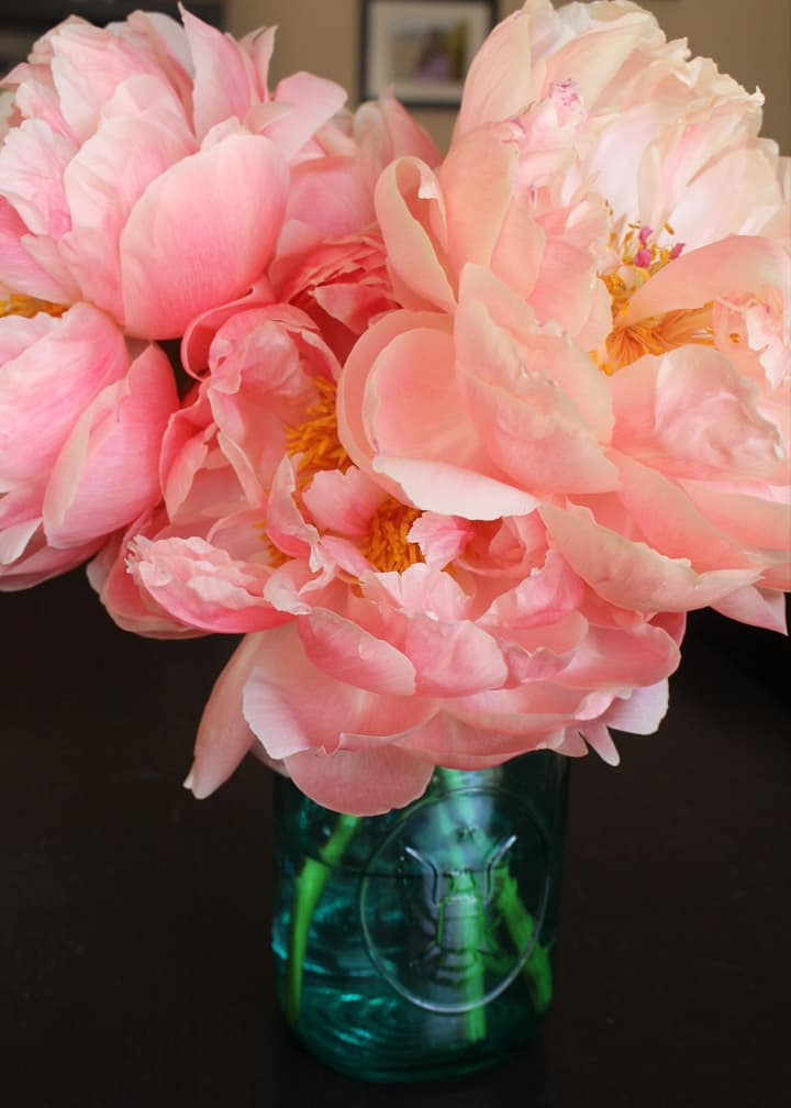 The Drama of Peonies in Spring - Fill your home with gorgeous, colorful peonies - the drama queens of spring! Home decor inspiration from Brenda Ponnay.
