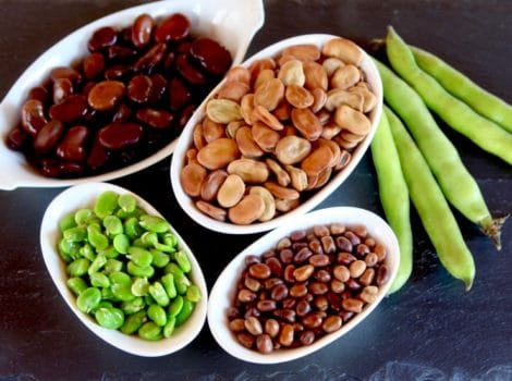 Fava Beans – How to Cook, Soak, Peel and Freeze