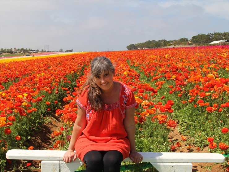 A woman in a red dress sitting in a white bench in front of a field of red ranunculus blooms.