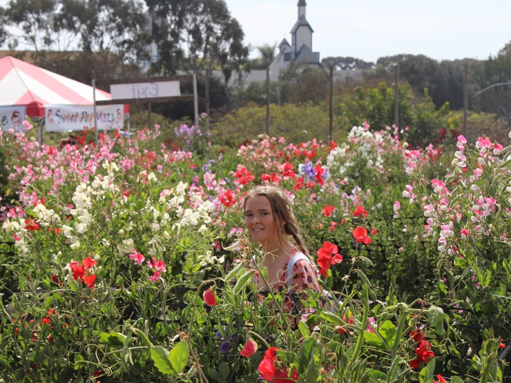 Young girl smiling in a field of colorful ranunculus blooms.
