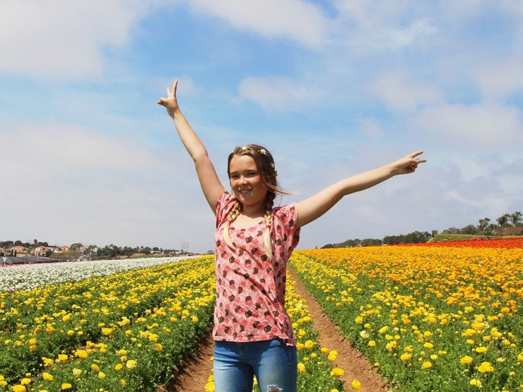 A young girl posing in a field of yellow ranunculus blooms. The sky overhead is bright blue with big fluffy clouds.