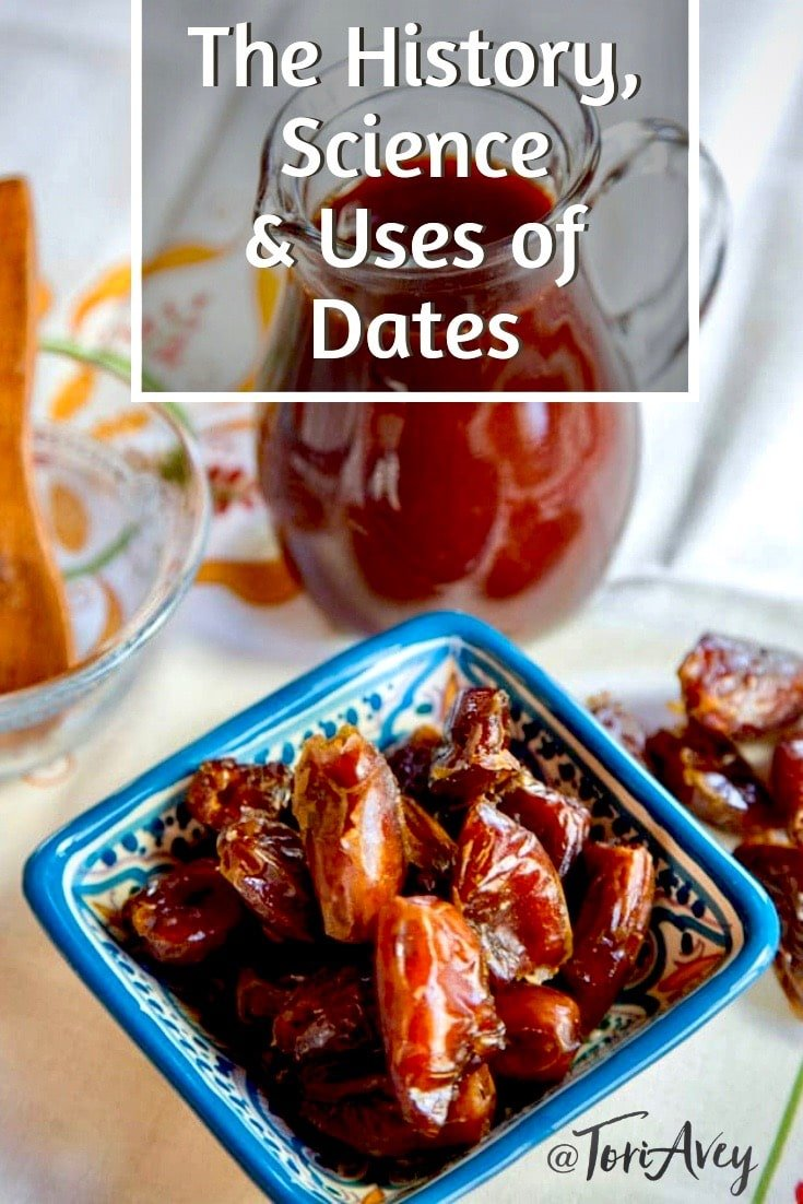 The History, Science, and Uses of Dates. Learn everything you ever wanted to know about dates. Includes healthy and delicious recipes for dates. | Tori Avey #dates #history #foodhistory #degletnoor #medjool #foodscience #daterecipes #TorisKitchen